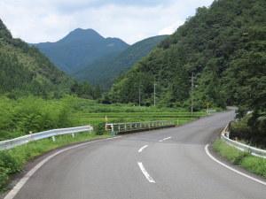 正面に見える「髙山」の麓を林道で抜ける
