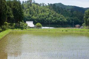京北宇野町