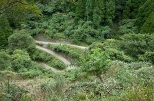 安泰寺への道